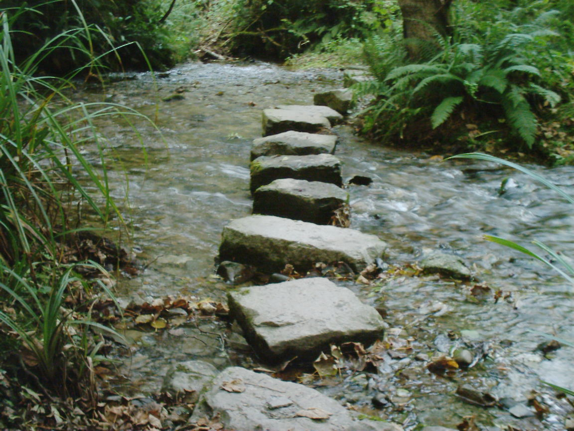 Stumbling-Blocks to Stepping-Stones – Footprints of a ... Stepping