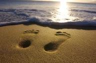 footprintschange